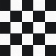 BLACK & WHITE CHECK   BEVERAGE NAPKINS