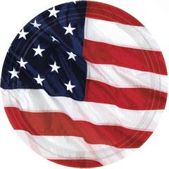 AMERICAN FLAG   7