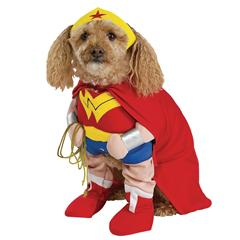 pet costumes for Halloween